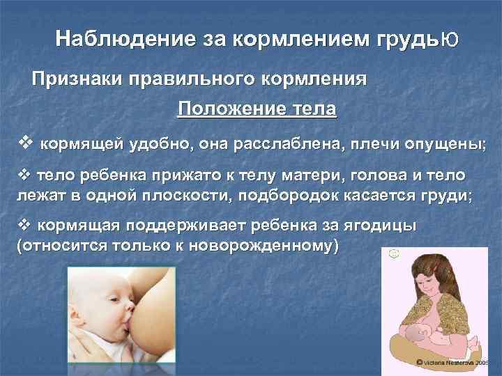 Грудное вскармливание: кормить новорожденного по режиму или по требованию