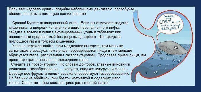 Метеоризм у взрослых | фитомуцил сорбент форте