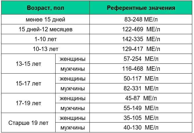 Биохимический анализ крови - ветеринарная клиника нефрологии веравет. ветеринар на дом