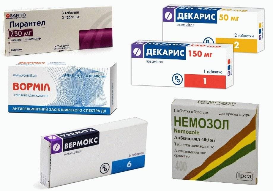 Таблетки от глистов: топ-10 самых эффективных препаратов