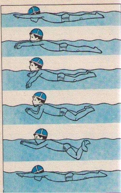 Дети учатся плавать с рождения или как научить ребенка плавать безопасно? первые уроки от 0 до 12 лет. инструкция для родителей