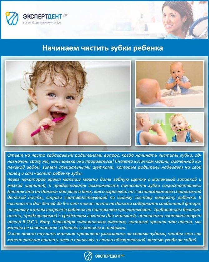 Как научить ребенка чистить зубы - возраст когда начинать чистить зубы детям