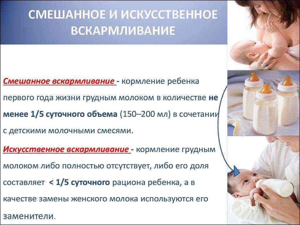 Е. комаровский: смешанное вскармливание – как правильно кормить и организовать