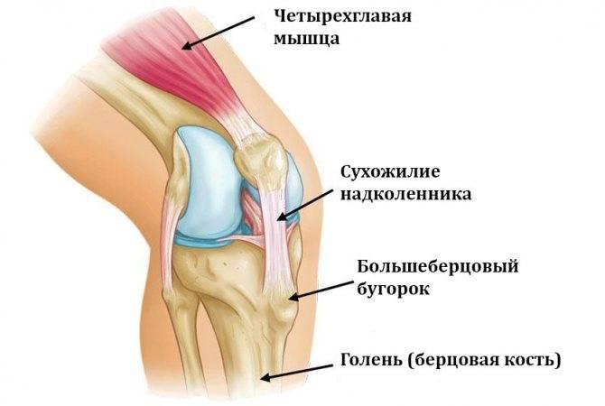 Боль в колене при вставании после сидения: причины, лечение, профилактика