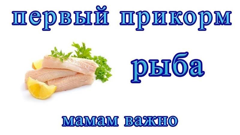 Введение рыбы в прикорм ребенку - когда и какую рыбу вводить