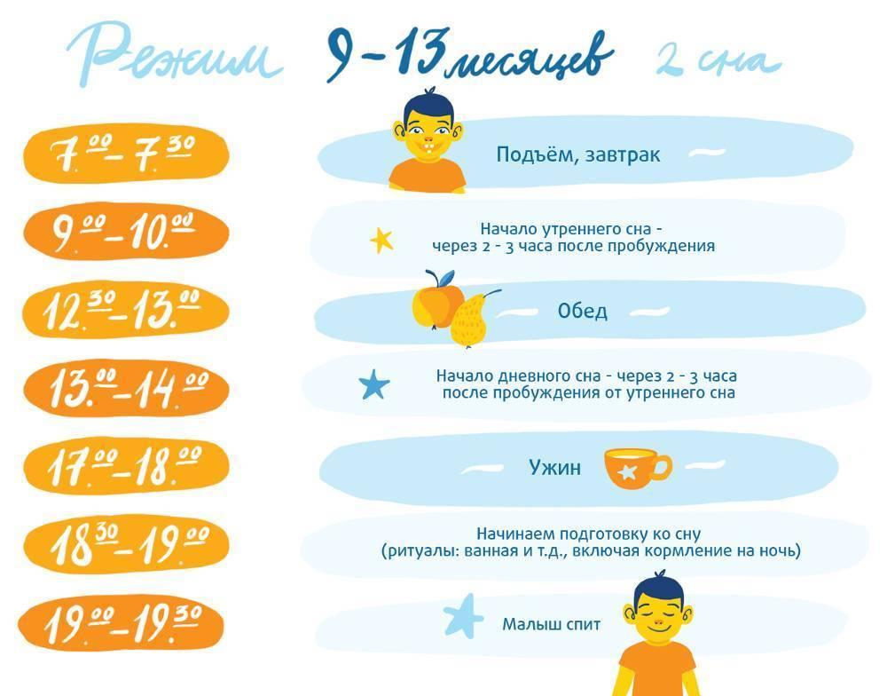 Сколько ребенок должен спать в 8-9 месяцев: сон днем, ночью (таблица)