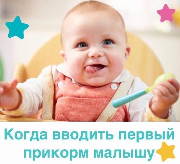 Первый прикорм ребенка: когда и как правильно вводить прикорм ребенку?