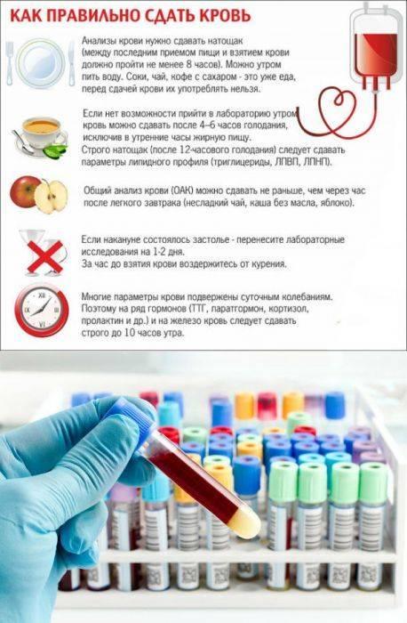 Клинический (общий) анализ крови