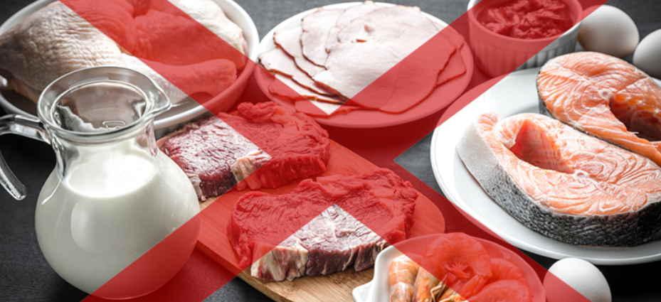 Ребенок не ест мясо. что делать?   | материнство - беременность, роды, питание, воспитание