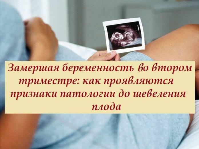 3 недели беременности после эко