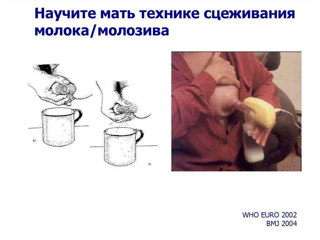 Как сцеживать грудное молоко руками: советы мамам, особенности и преимущества этого способа