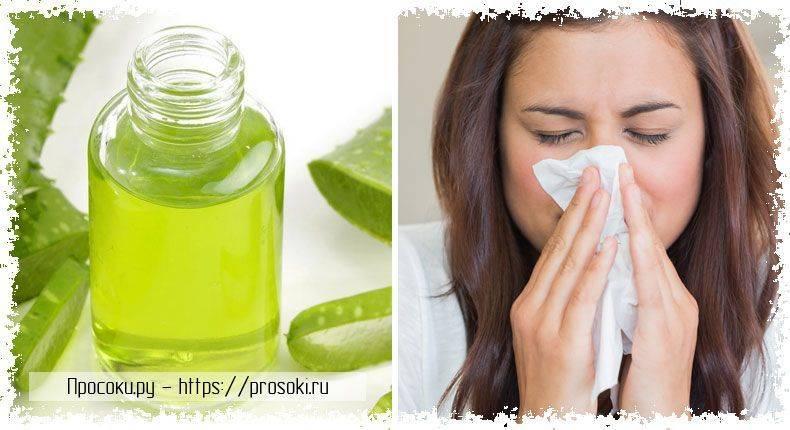 Как соком алоэ лечить ринит, полипы, заложенность носа? рецепты, рекомендации врачей