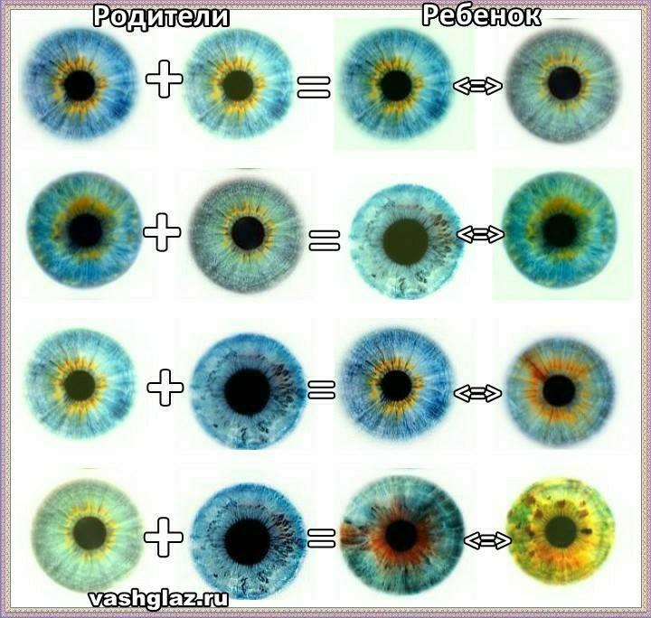 Когда меняется цвет глаз у новорожденных детей | все о болезнях глаз