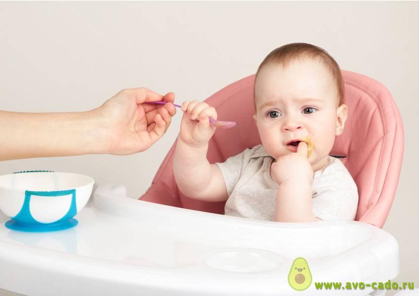 Как определить, что ребенок готов к прикорму – 10 признаков
