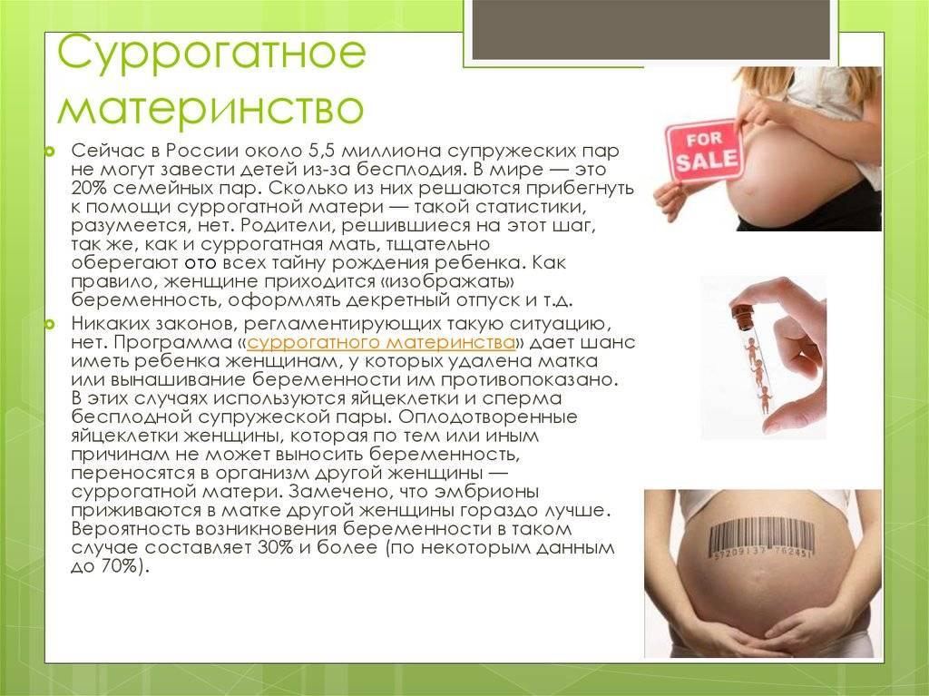 Как стать суррогатной матерью в москве, требования  | сколько платят суррогатной матери