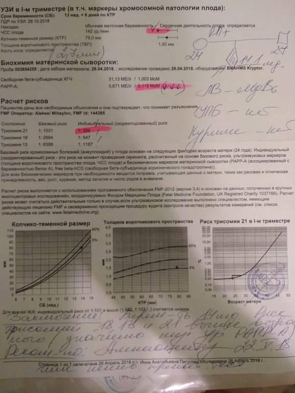 Пренатальный скрининг: биохимические тесты, узи-диагностика развития плода