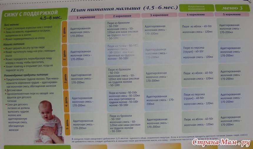 Правильный прикорм детей с 3 месяцев: таблица, меню, рекомендации