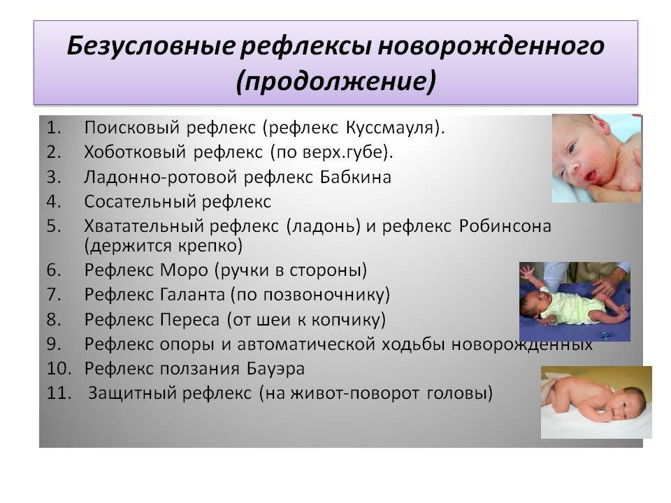Основные рефлексы у новорожденных детей