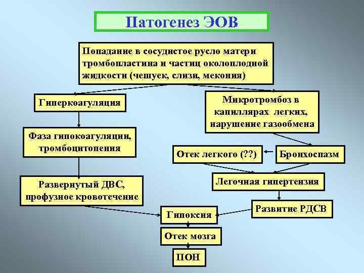 Клинические протоколы