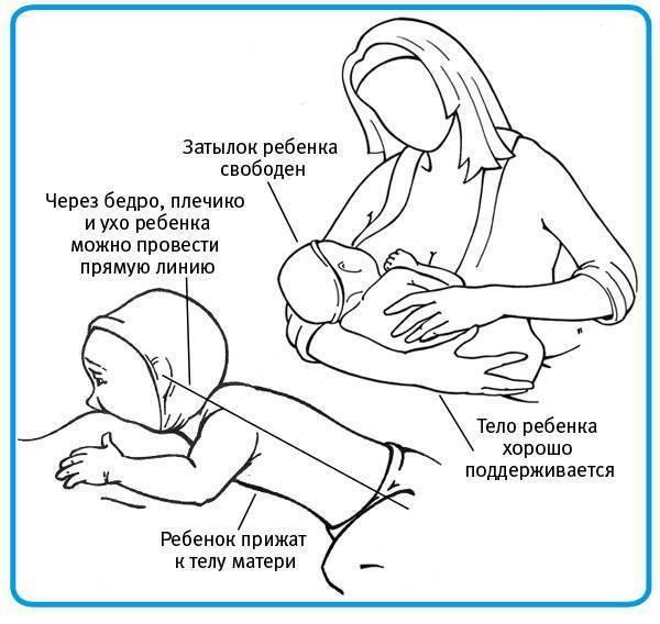 Когда начинать кормить ребенка грудным молоком?