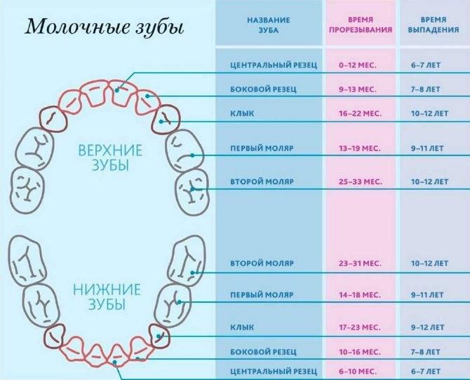 Аномалии зубов