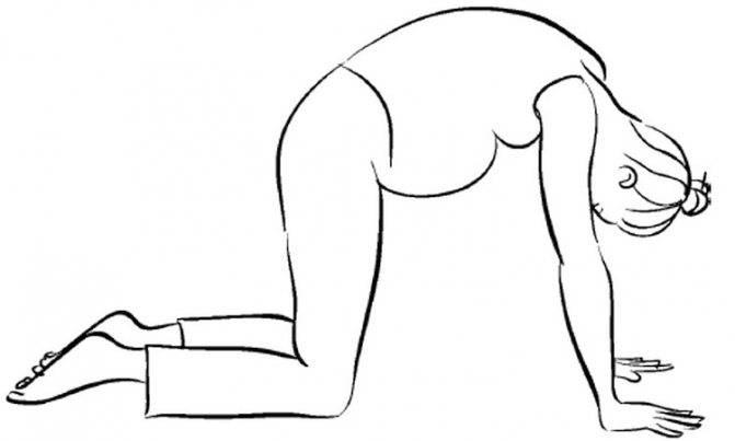 Коленно-локтевая поза для беременных: показания, польза и правильное выполнение