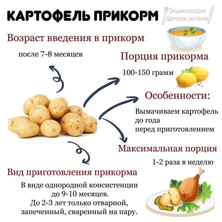 Можно ли при грудном вскармливании картошку есть жареную либо в виде пюре, а также разрешается ли её кушать в первый месяц гв, когда ребенок новорожденный?