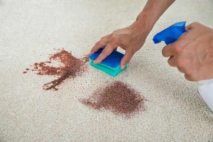 Как эффективно вывести неприятный запах мочи с ковра и не повредить покрытие