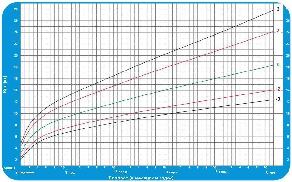 Таблица роста и веса детей по годам: норма и соотношение параметров от 0 до 18 лет по ВОЗ