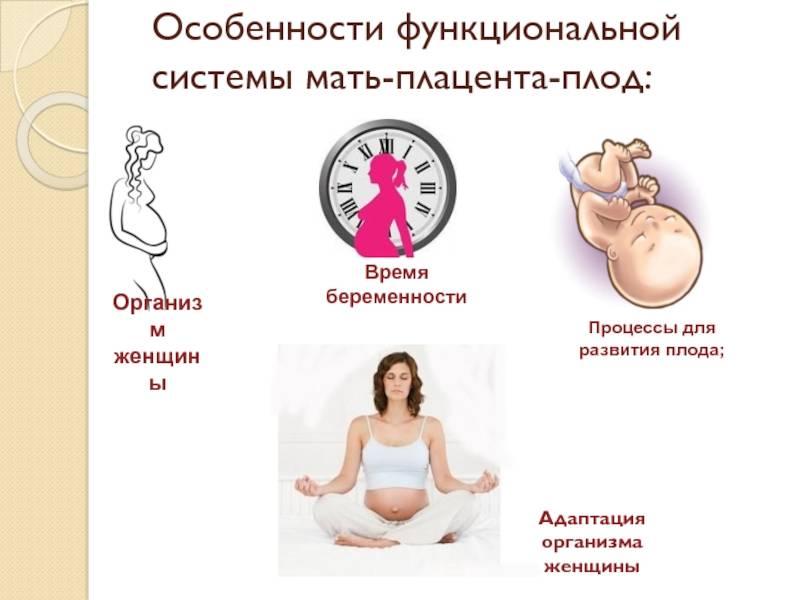 Инфекции мочевыводящих путей у беременных