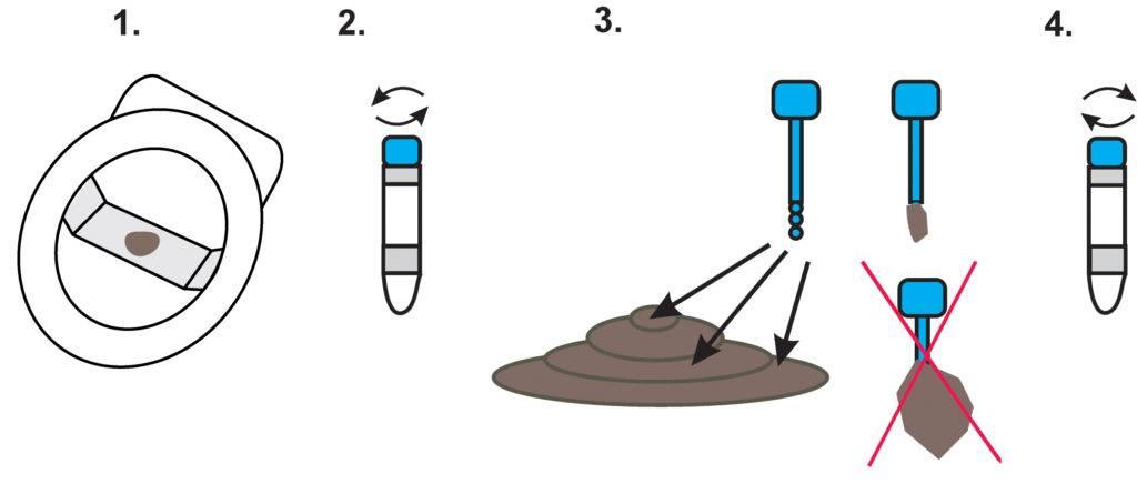 Анализ кала у грудничков: как сдавать новорожденному ребенку, расшифровка, какие бывают показатели