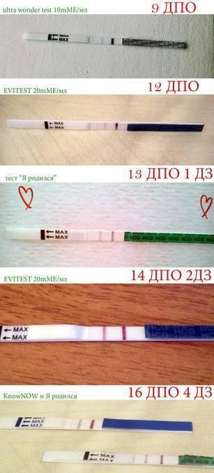 На узи нет беременности при положительном тесте