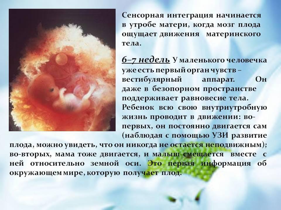 Можно ли навредить ребенку в утробе