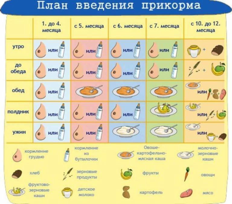 Как начать педагогический естественный прикорм у грудного ребенка