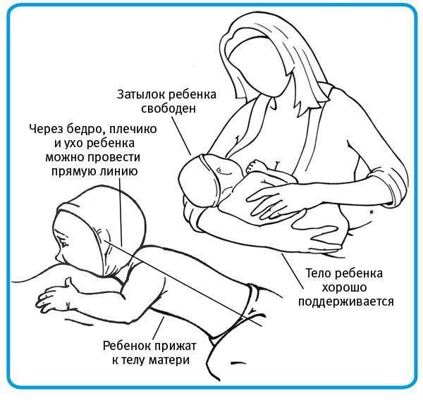 Как правильно прикладывать ребенка для кормления