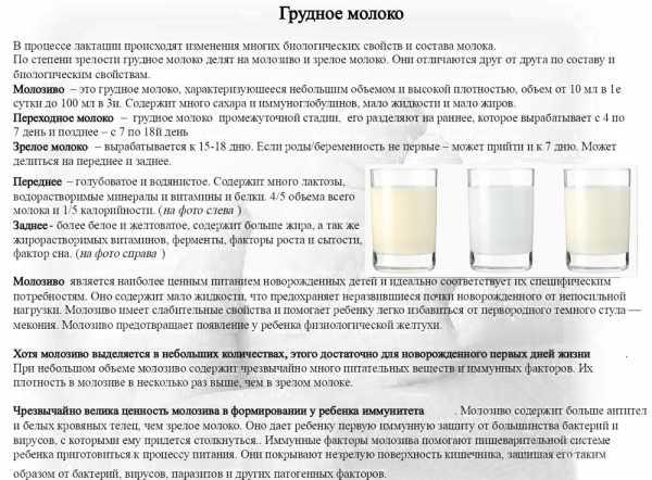Мало молока – мифы и реальность грудного вскармливания