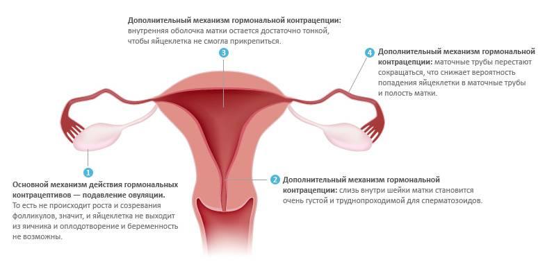 Почему при приеме противозачаточных таблеток можно забеременеть | аборт в спб
