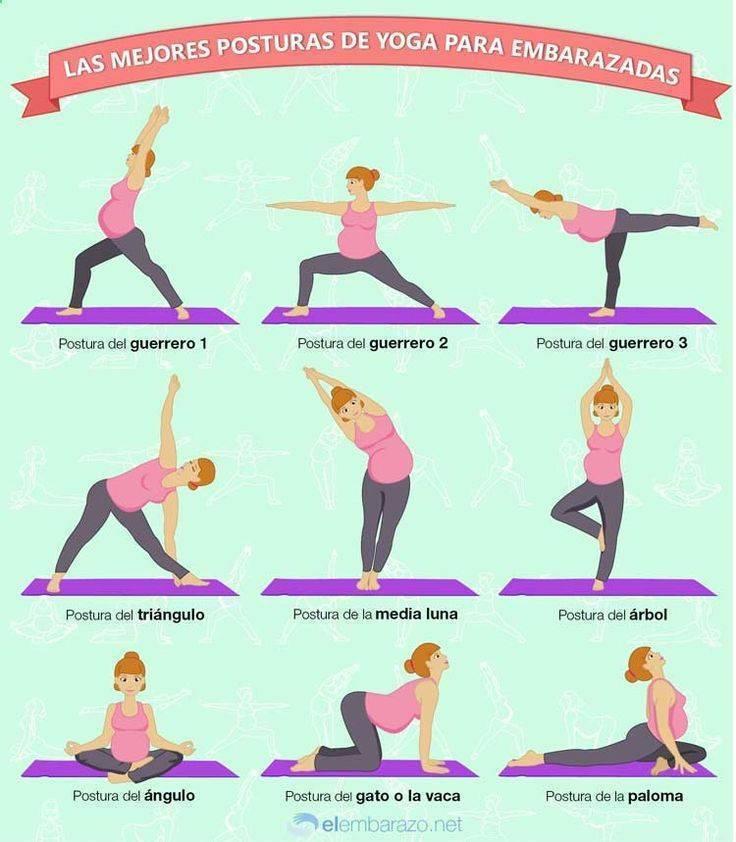 Упражнения для беременных в домашних условиях 1,2,3 триместр: как правильно заниматься? гимнастика на фитболе (фото + видео)