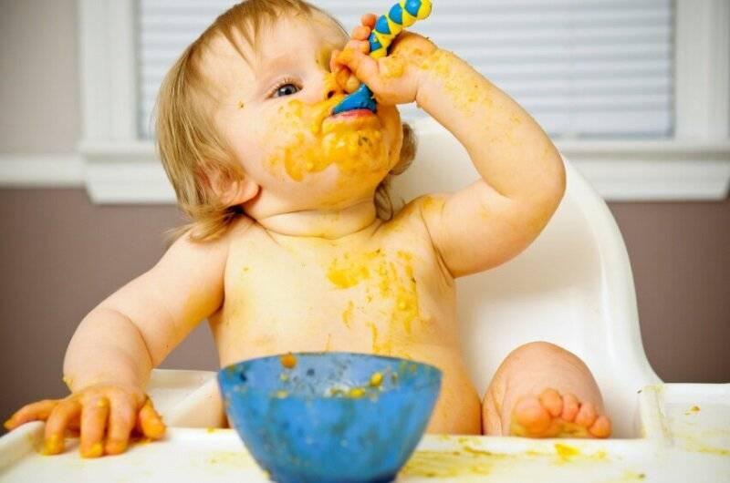 Как научить ребенка жевать твердую пищу — когда начинать