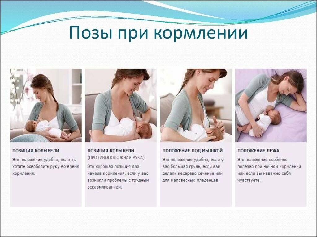 Позы для кормления новорожденных грудным молоком