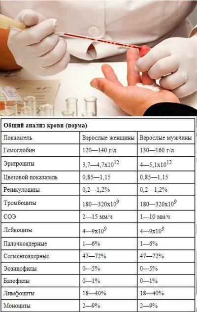 Когда назначают общий анализ крови и как к нему подготовиться