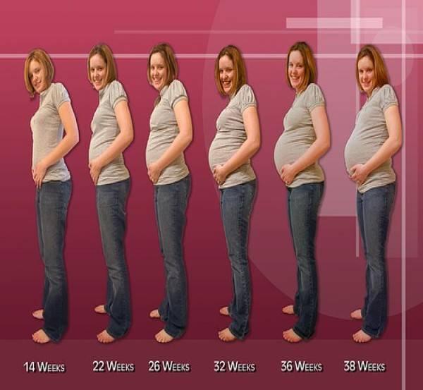 На какой недели беременности начинает болеть и расти грудь