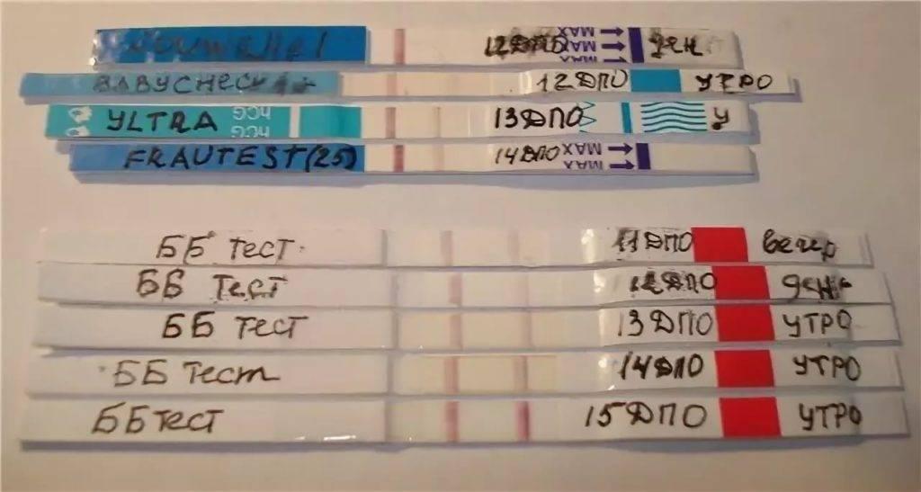 Когда анализ крови на ХГЧ покажет беременность: через сколько дней после зачатия начнет расти?