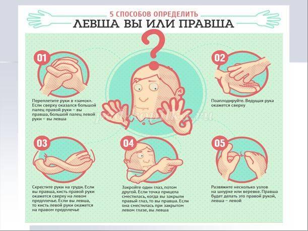 Как определить, левша или правша ребенок | 2 метода