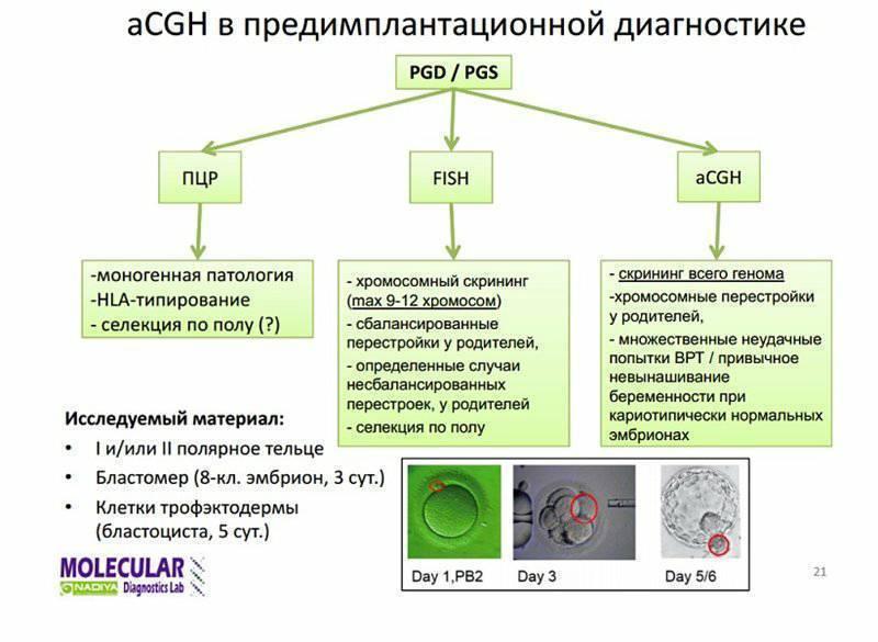 Преимплантационная генетическая диагностика или скрининг