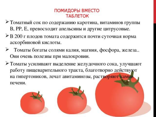 Можно ли сажать помидоры и огурцы, и что можно сажать до и после помидоров на supersadovnik.ru