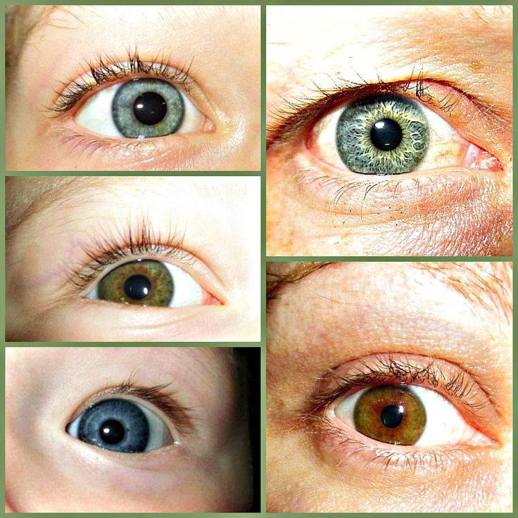 Во сколько у грудничков меняется цвет глаз или когда меняются глаза у новорожденных, секреты изменения цвета глаз у младенца