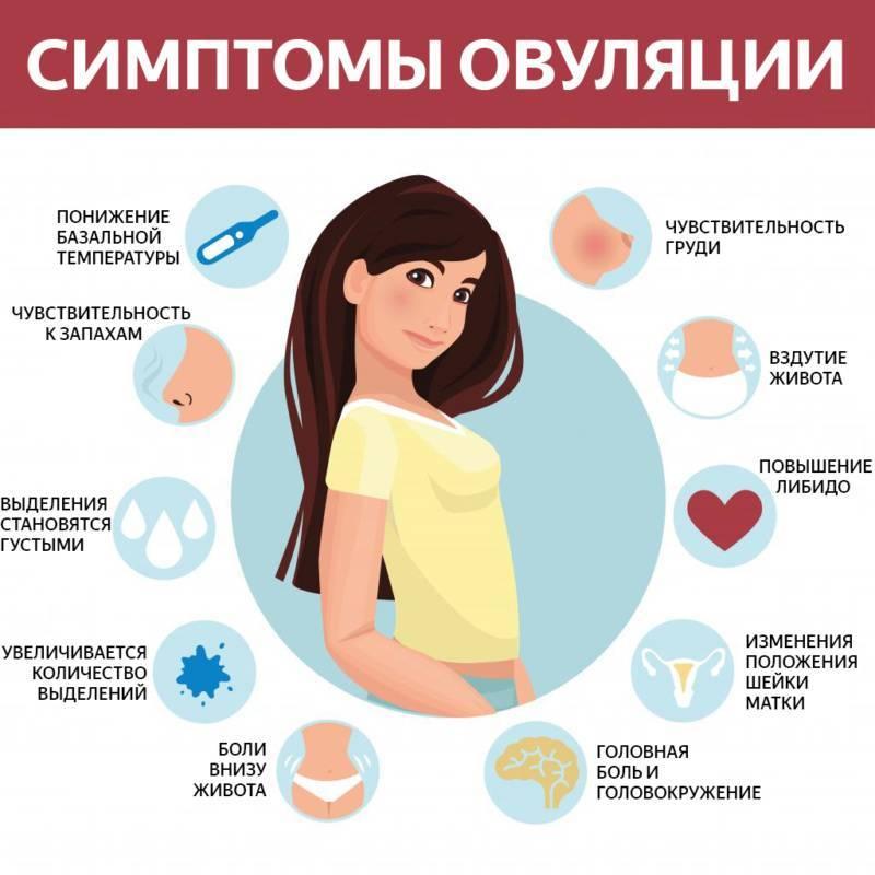 Болезненная овуляция: каковы причины боли, может ли быть симптомом какой-то болезни?