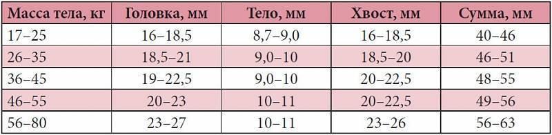 Узи селезенки у детей: таблица размеров органа в норме по возрасту, причины отклонений
