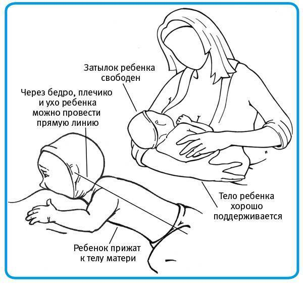 Как правильно носить грудничка — советы практикующего педиатра
